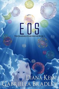 EOS200x300